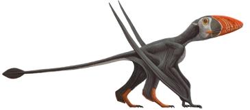 dimorphodon-700.309